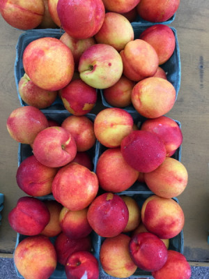 Stillwell_Nectarines