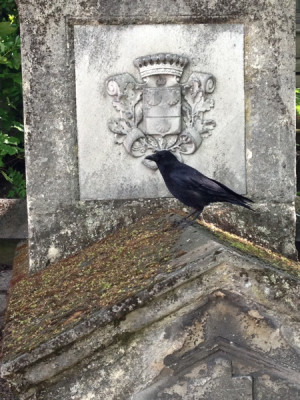 Stillwell_Raven_Grave