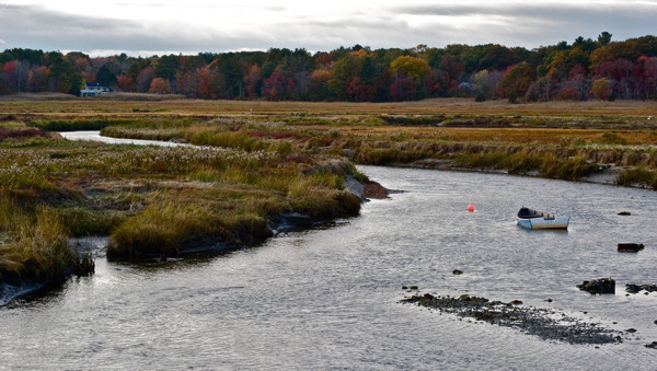 Stillwell,Maine Wetland