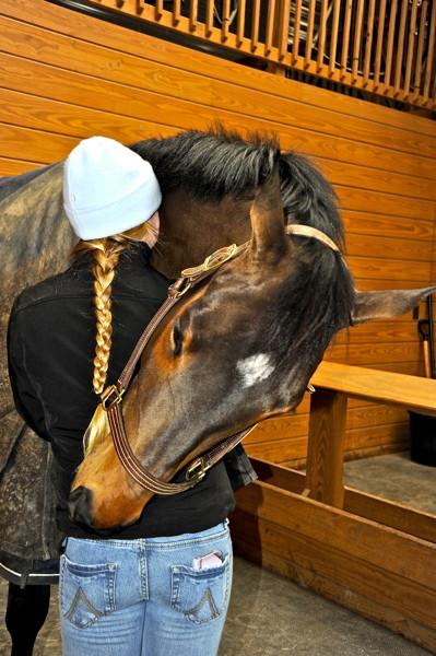 Stillwell_A_Horse Hug
