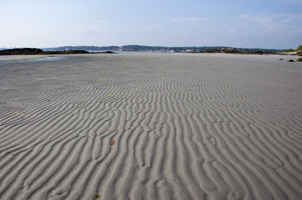 Stillwell_ME_Mudflat_Low_Tide